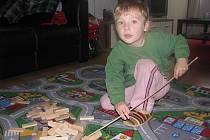 Čtyřapůlletý Jaroušek spadl 21. listopadu v Lokti z Kolowratské skály do řeky Ohře. Díky rychlé reakci své matky a dvou mužů se mu nic vážného nestalo.
