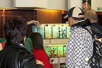 Akvatrhy nabídly bohatý sortiment a návštěvníci opět zaplnili sál kulturního střediska k prasknutí.