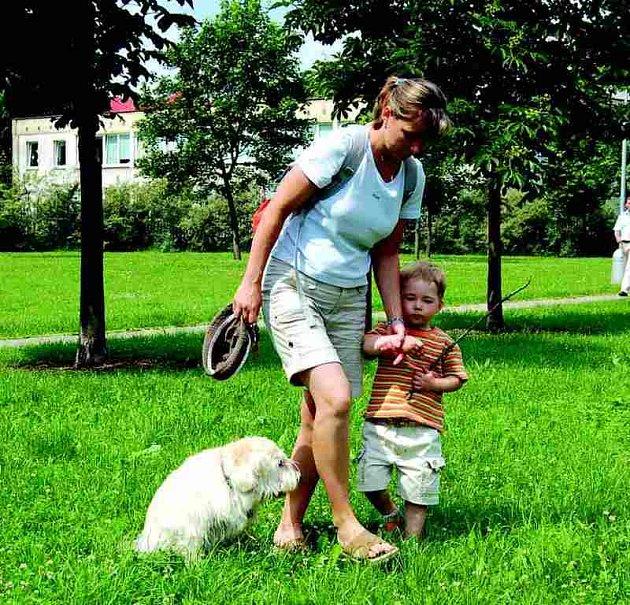 Volné pobíhání psů po Bukovanech bude po Novém roce upravovat nová vyhláška