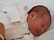 DOMINIK DOLEJŠÍ z Krásné u Aše se narodil 10. července
