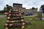 Dřevouhelná vysoká pec v Šindelové