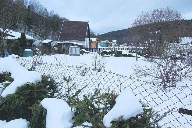 PODLE VEDENÍ Kraslic se zahrádkáři o své zahrady nemusí obávat. Radnice zatím sonduje, kolik z nich by pozemky chtělo a kolik ne.