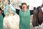 Silvestrovský běh samurajů v Chodově