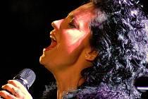 Lucie Bílá svým vystoupením v loketském amfiteátru fanoušky dokonale nadchla.