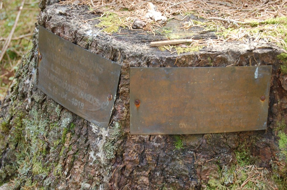 Lesní hřbitov.