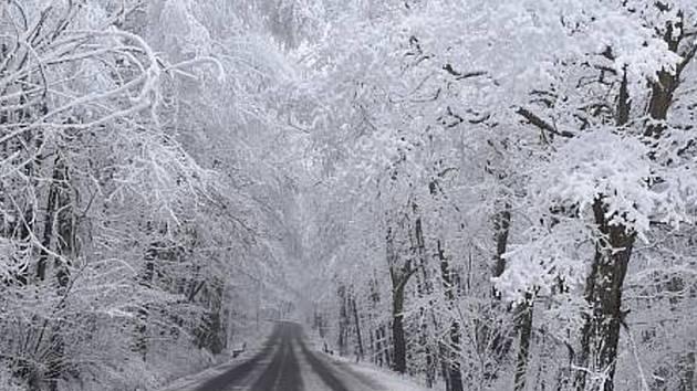 Zima a mráz v posledních dnech kouzlí v přírodě nejrůznější obrazce.