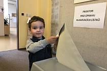 """Hlas za svoji maminku Michaelu hodil do volební urny také Petr Kopta. """"Chodím volit pravidelně,"""" řekla jeho maminka s tím, že nechtěla udělat výjimku ani na eurovolby. """"Pokud mám volno, sedím i v komisy,"""" doplnila."""