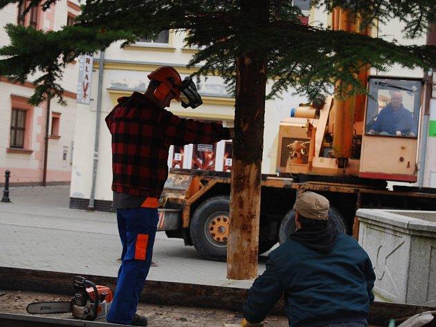 Na Staré náměstí v Sokolově dorazil vánoční strom