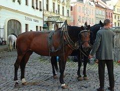 Při natáčení seriálu Génius o životě Alberta Einsteina se Loket vloni proměnil na švýcarské městečko a po náměstí jezdily koňské povozy.