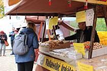 Svatováclavské vinobraní v Lokti je tradičně hojně navštěvovanou akcí.