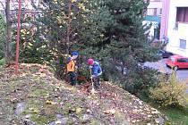 Sportovci uklízeli pro nemocnici v Sokolově.