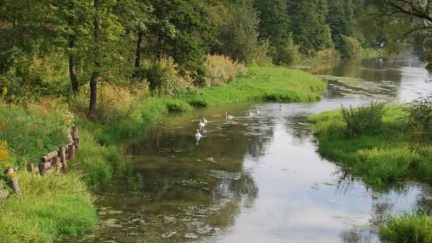 Nové rameno řeky Ohře u Sokolova
