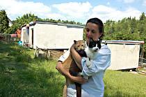 PROVOZOVATELKA kočičího útulku Konec toulání Alexandra Jančová se pustí díky grantu města Kraslice do modernizace jediného útulku  (v pozadí) v Karlovarském kraji.