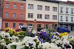 Knihovna a pobytové zařízení pro seniory v Sokolově jedou dál