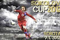 Sokolov cup 2012