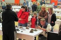 Výstava modelářů v Březové