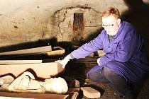 V expozici, kterou připravuje městský historik Miloš Bělohlávek (na snímku), bude vystaveno i několik předmětů, které byly nalezeny ve znovuotevřené kryptě pánů z Plankenheimu.