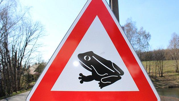 Pod koly aut hynou stovky žab