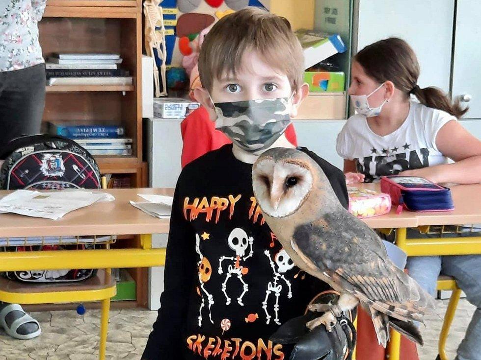 Dvouletý Sovík nadchnul seniory, děti i nemocnou slečnu.