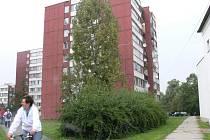 Sídliště - ilustrační foto.