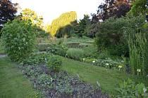 Botanická zahrada nabízí klidný přístav v rušném centru města.