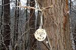 Krmítko umístěné na větev stromu.