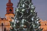 8. Vánoční strom ve Veselí nad Lužnicí.