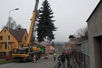 Cesta vánočního stromu z Údolní ulice na Žižkovo náměstí.