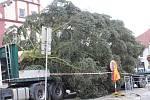 Vánoční strom na Žižkově náměstí v Táboře se nepodařilo v pondělí ukotvit, musel tak přečkat dvě následující noci na tahači. Pracovníci města mezitím rozšířili skruž, do níž ho ukotví.