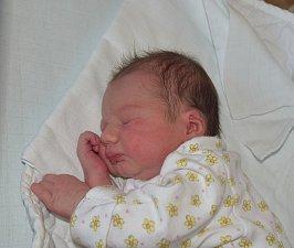 Nikol Kratochvílová z Měšic.  Narodila se jako druhá dcera v rodině 16. října v 19.26 hodin. Její váha byla 3150 gramů, míra 48 cm a sestřičce Andree je dva a půl roku.