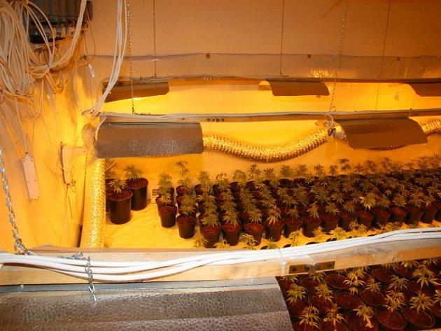 KONEC. Více než roční pátrání skončilo dopadením cizince, který na Táborsku provozoval pěstírnu marihuany.
