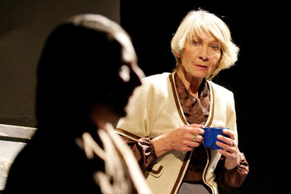 V divadle zahraje Daniela Kolářová.