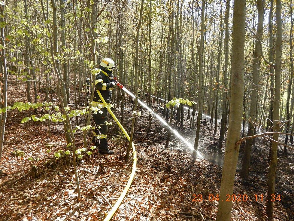 Požár lesní hrabanky u Mladé Vožice.