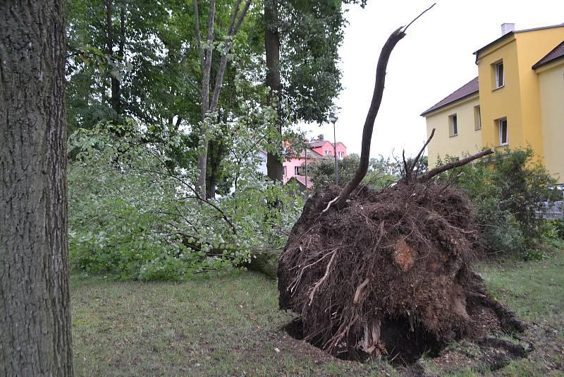Ve Veselí nad Lužnicí noční vichřice vyvracela stromy a odnesla i půlku střechy supermarketu Tesco.