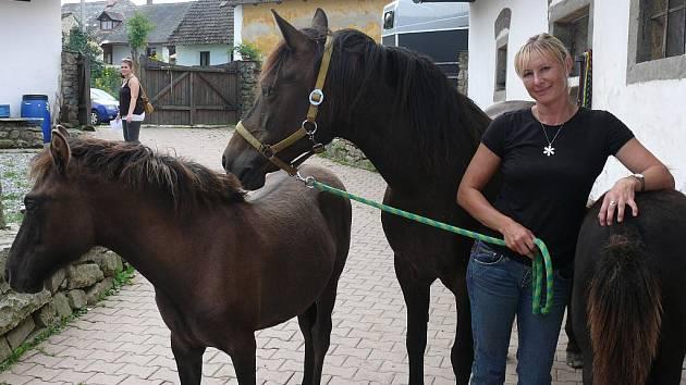 Yvona Vopravilová chová na Cunkově s manželem huculské koně.