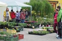 Od pátku 26. do soboty 27. dubna se konala tradiční prodejní výstava květin v Radimovicích u Želče.