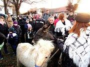 Všichni si chtěli pohladit živého koníka a oslíka.