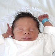 ALBERT NOVAGUE ZE SOBĚSLAVI. Bráška dvouletého Alexe přišel na svět 2. února v 9.01 hodin. Po narození vážil 3320 g a měřil 50 cm.