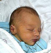 ERAZIM DVOŘÁK Z DRAŽIČEK. Přišel na svět 12. března ve 2.36 hodin jako první dítě v rodině. Po narození vážil 3080 g a měřil 48 cm.