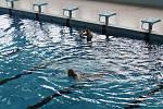 Plavecký stadion v Táboře.