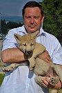 Evžen Korec držel mládě vyhubením ohroženého vlka arktického.