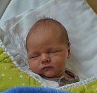 Tomáš Kříž z Bechyně. Narodil se jako druhý syn v rodině 25. ledna ve 12.47 hodin. Vážil 3710 gramů, měřil 51 cm a bráškovi  Štěpánkovi je rok a půl.
