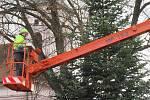 Zdobení darovaného stromu na Husově náměstí v pátek 20. listopadu.