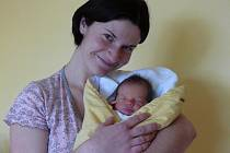 JOSEF ŠTROBACH ZE SEZ. ÚSTÍ.  Maminka Šárka se těší z prvního syna narozeného 12. listopadu v 5.42 hodin s váhou 2960 g a mírou 51 cm.