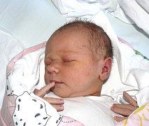 VIKTORIE KOSOVÁ Z BOŽEJOVIC. Přišla na svět 5. prosince čtyřicet tři minut po sedmé hodin jako prvorozená dcera  rodičů Jany a Ladislava. Po narození  malá Viktorie jí vážila 3420 g a měřila 54 cm.