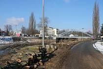 Torza stromů dávají tušit, že práce na stavbě protipovodňové ochrany ve Veselí nad Lužnicí už začaly.  U některých ale panují obavy nad významem díla.