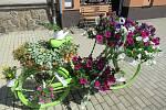 Marika Syrovátková své kadeřnické kolo ladila do zeleno-bílé a přidala i malého pokračovatele.