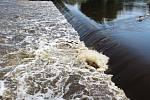 Záchranářské práce na jezu Dráchov v sobotu 8. srpna 2020 odpoledne. Na jezu v obci nedaleko Soběslavi na Táborsku se zvrhli dva vodáci. O síle řeky svědčil kmen, který vodní válec držel pod jezem.