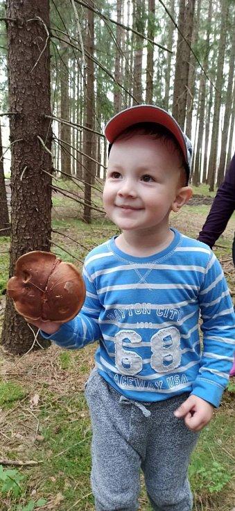 Malí houbaři.