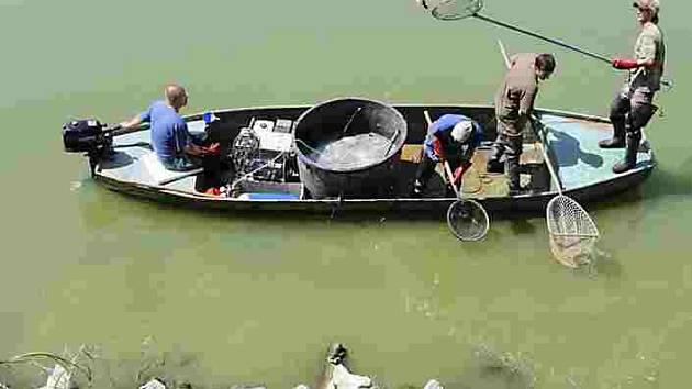 Rybáři už vyzkoušeli odlov ryb z Jordánu.